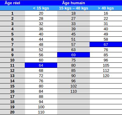 Comment Calculer Age Chien quel âge a mon chien en âge humain ? - guides hello véto
